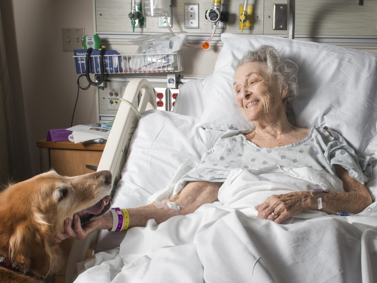 Animal-Assisted Therapy - Northwest Community Healthcare