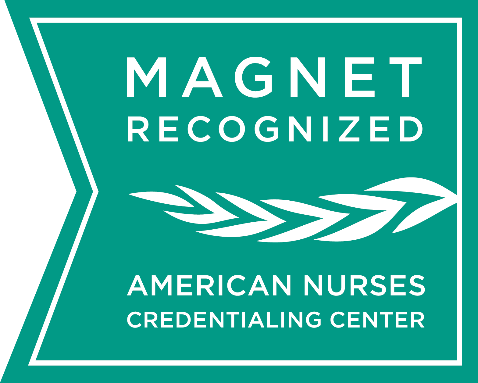 Magnet® Recognition for Nursing Excellence