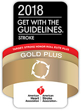 Get With The Guidelines® Stroke Gold Plus with Target: Stroke Honor Roll Elite Plus